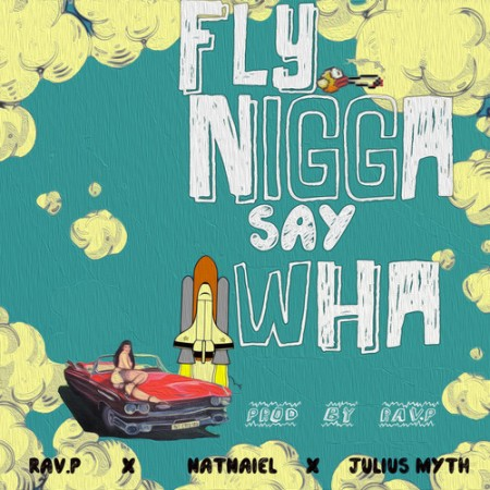Fly-Niggas-Artwork